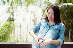 Pretty Asian woman is pregnant. Wearing a denim shirt Sit and relax in the garden. A pretty Asian woman is pregnant. Wearing a denim shirt Sit and relax in the stock images