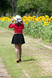 Pretty Asian woman walking in sunflower field. Royalty Free Stock Image