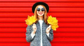 Pretty autumn smiling cool girl with yellow maple leaves Royalty Free Stock Photography