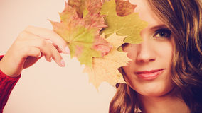 Pretty autumnal girl with maple leaves in hand Royalty Free Stock Photo