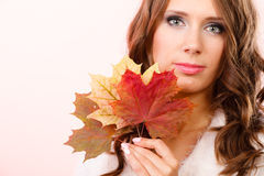 Pretty autumnal girl with maple leaves in hand Royalty Free Stock Photos