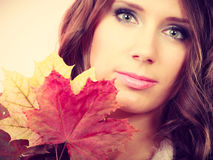 Pretty autumnal girl with maple leaves in hand Stock Image