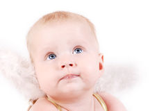 Pretty baby with angel wings Stock Photos