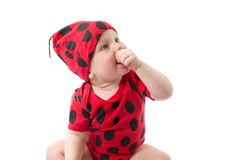 Pretty baby boy, dressed in ladybug costume on white background. Royalty Free Stock Images
