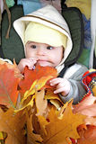 Pretty baby-fall walk. Pretty baby in baby carriage with fall leafs Stock Photo