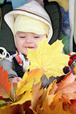 Pretty baby-fall walk. Pretty baby in baby carriage with fall leafs Stock Images