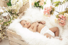 Pretty baby girl in box with fur blanket and flowers around Stock Photos