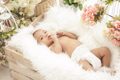 Pretty baby girl in box with fur blanket and flowers around Stock Photography