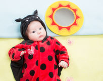 Pretty baby girl, dressed in ladybug costume on green background. Stock Photos