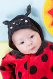 Pretty baby girl, dressed in ladybug costume on green background Royalty Free Stock Image