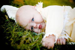 Pretty baby girl on grass Stock Images