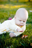 Pretty baby girl and leaf. Small sweet baby girl lying on the grass and attempting to touch an autumn leaf by hand stock photo