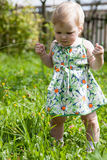 Pretty baby girl in a summer park Stock Images
