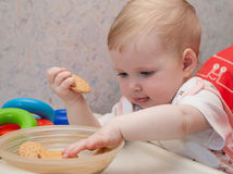 Pretty baby reaching out for biscuit Stock Photography