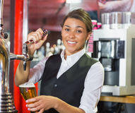 Pretty barmaid pulling pint of beer Stock Images