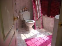 Pretty bathroom. Bathroom interior Stock Images