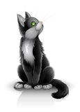 Pretty black kitten Royalty Free Stock Photos