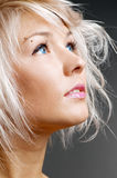 Pretty blond with blue eyes looking at something. Studio portrait over grey background Royalty Free Stock Photo