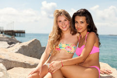 Pretty blond and brunette girls Stock Photos
