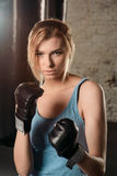 Pretty blond girl in boxing gloves. Stock Images