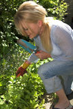 Pretty blond woman gardening Stock Photos