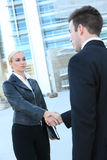 Pretty Blonde Business Woman Stock Photos
