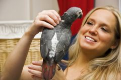 Woman and Her Pet African Grey Parrot Royalty Free Stock Images