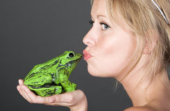 Pretty Blonde Girl Kissing a Frog Stock Photos