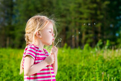 Pretty blonde little girl with closed eyes blowing a dandelion Stock Photos