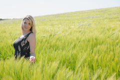 Pretty blonde in sundress standing in wheat field Stock Photography