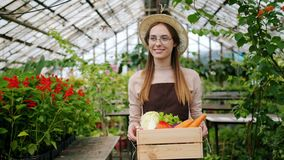 Pretty blonde woman walking in greenhouse with box of fresh vegetables. Pretty young blonde woman in apron and hat walking in greenhouse with box of fresh stock footage