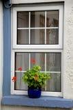 Pretty blue pot with flowers on quaint stone windowsill Royalty Free Stock Image