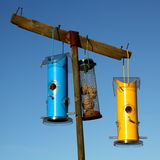 Pretty blue and yellow bird feeders Stock Image