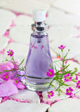 Pretty bottle of perfume Royalty Free Stock Photo