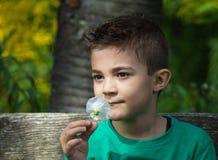 Pretty boy. Looking at camera outdoors shot Stock Image