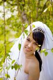 Pretty bride Royalty Free Stock Photos