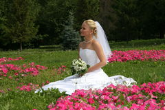 Pretty bride. Newlywedses on walk in park. This photo is not correction Stock Photography