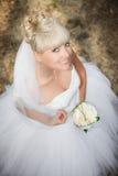 Pretty bride. Portrait of pretty bride with veil stock photo