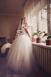 Pretty bride stands near window Stock Photo