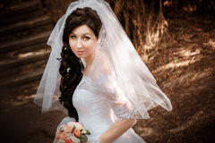 Pretty bride with veil Stock Images