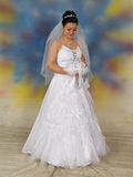 Pretty bride in wedding dress Royalty Free Stock Image