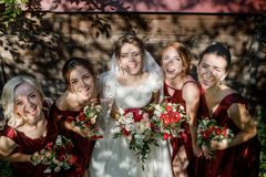 Bride with bridesmaids on the park on the wedding day stock images