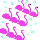 3 flamingo pattern with blue bubbles vector illustration