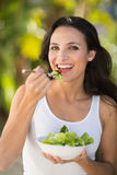 Pretty brunette eating bowl of salad Royalty Free Stock Photo