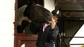 Pretty brunette feeding horse in stable stock video footage