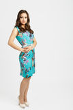 Pretty brunette girl. Pretty asian brunette girl on heels royalty free stock photography