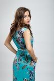 Pretty brunette girl. Pretty asian brunette girl wearing blue dress stock photo