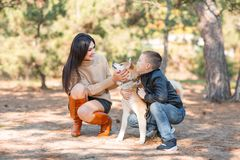 Pretty brunette girl and a little boy walking with dog in the park. Animal concept. Beautiful girl and a little boy having fun with doggie in the park outdoors Royalty Free Stock Photo