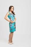 Pretty brunette girl portrait. Pretty happy brunette girl wearing blue dress stock photo