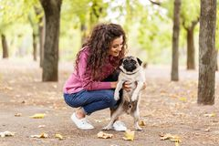 Pretty brunette girl walking with dog in the park. Animal concept. Beautiful girl with long hair having fun with doggie mops in the park outdoors. Young woman Royalty Free Stock Image